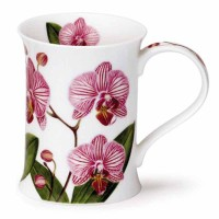 Kubek Cotswold Orchids Stripy 330ml Dunoon