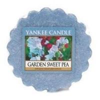 Wosk Garden Sweet Pea