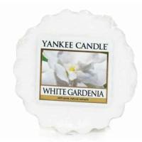 Wosk White Gardenia