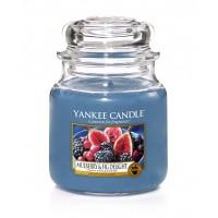 Świeca średnia Mulberry & Fig Delight  Yankee Candle