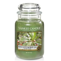 Świeca duża Snow Dusted Bayberry Leaf Yankee Candle
