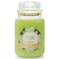 Świeca duża Honeydew Melon Yankee Candle
