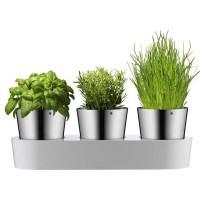 Zestaw 3 doniczek na zioła WMF